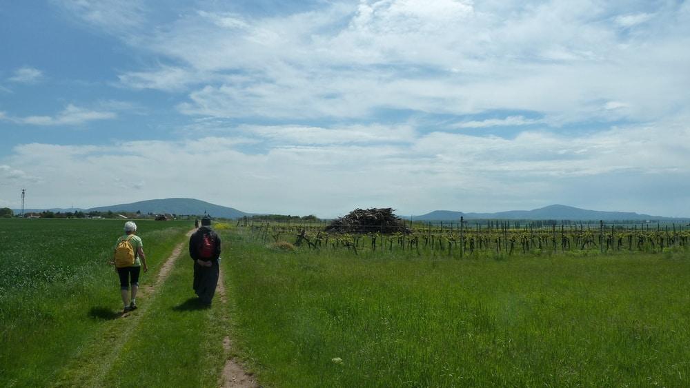 Oblatentag – Wanderung und Marienweihe